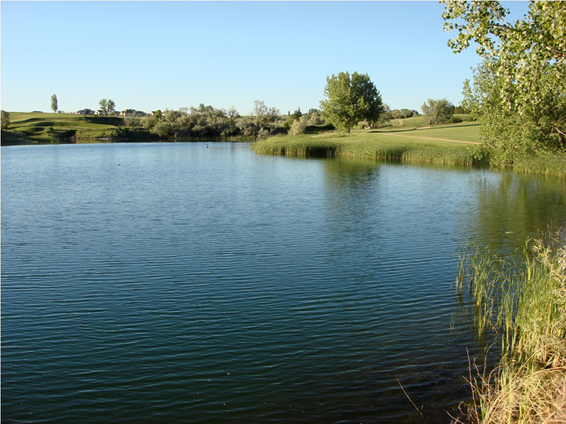 07_mad_russian_golf_course_800x600