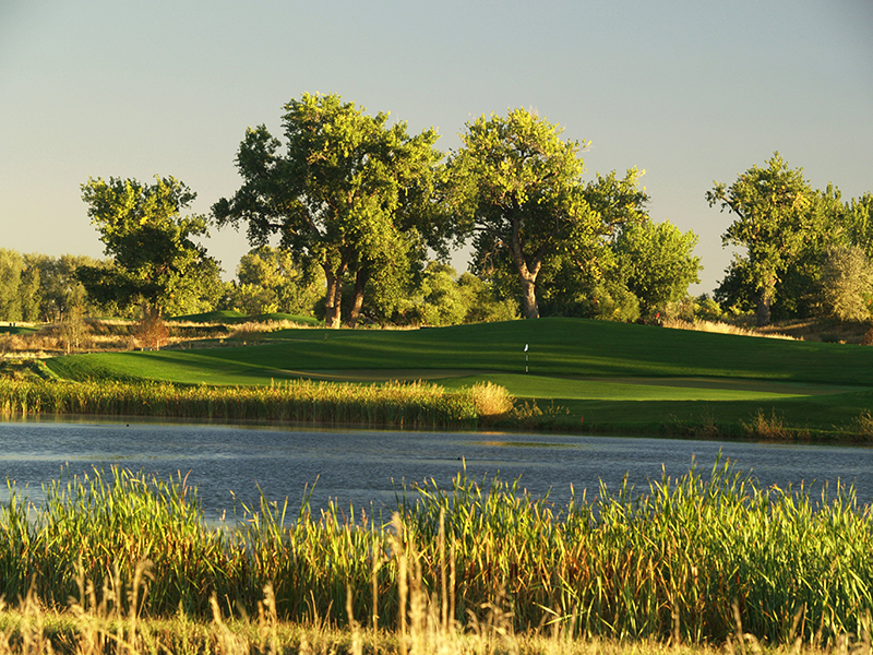 16_harmony_club_golf_course_2